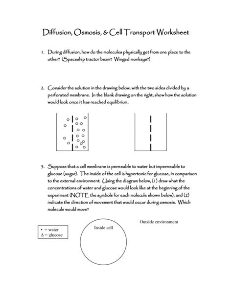 worksheet osmosis  tonicity coloring pages learny kids