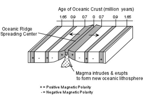 pattern of magnetic polarity reversal plate tectonics