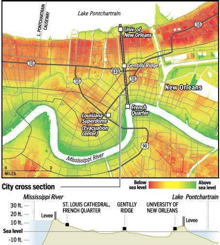 sections of new orleans in laurie s brain new orleans cross section