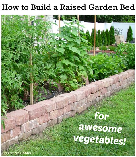 How To Set Up A Vegetable Garden Bed How To Build A Raised Garden Bed For Vegetables