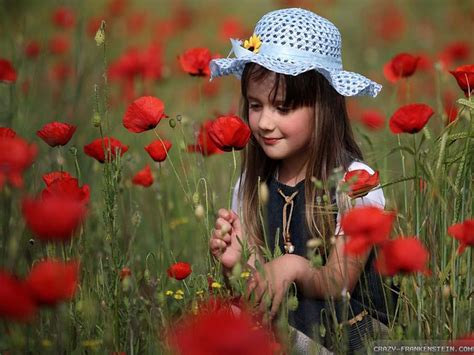 wallpaper flower with girl free macro flowers wallpaper 1280x800 7490