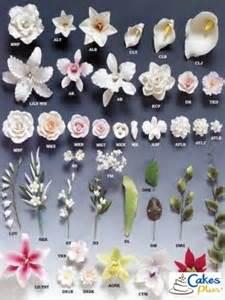 sugar flowers cakes plus tampa