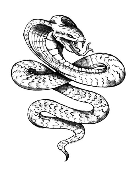 coloring pages king cobra king cobra king cobra tattoo coloring pages dise 241 os