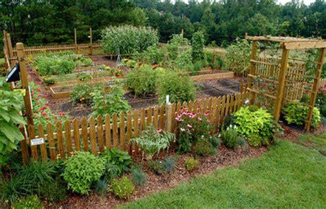 vegetable garden in home wallpapers vegetable gardens vegetable gardening