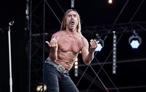 iggy pop best songs iggy pop s 10 best collaborations nme