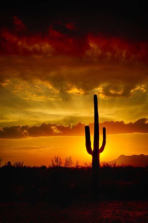 Southwestern L by Southwestern Style Sunset Photograph By Saija Lehtonen