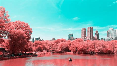 wallpaper central park infrared lake manhattan