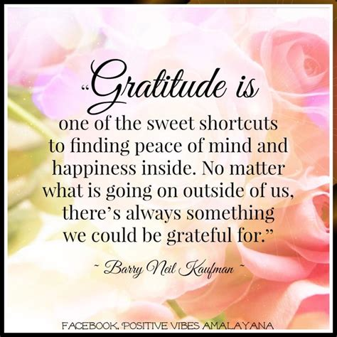 the gratitude journal for find happiness and peace in 5 minutes a day books gratitude is one of the sweet shortcuts to finding