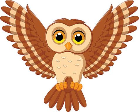 flying owl clipart best owl flying illustrations royalty free vector