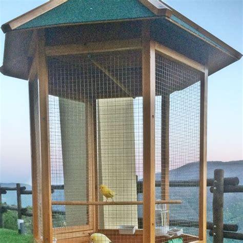 uccelli da giardino voliera per pappagalli in legno da giardino