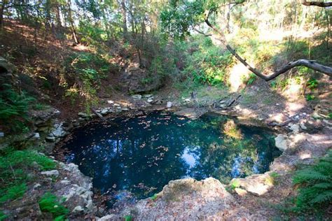 Tallahassee Sink Holes by Church Sink Tallahassee Florida