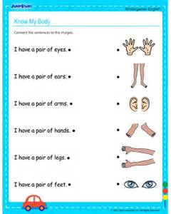 know my body free kindergarten english worksheet jumpstart