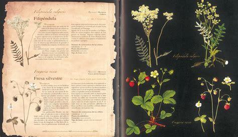 atlas ilustrado de plantas 8467712570 atlas venta de libros susaeta ediciones