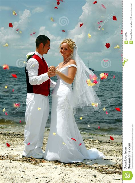 beach wedding throwing flowers stock images image