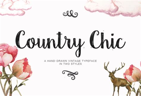 country style lettering country chic font family by emily spadoni font bros