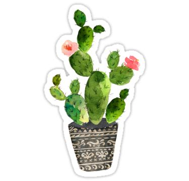 Cactus Stickers quot watercolor cactus quot stickers by southprints redbubble
