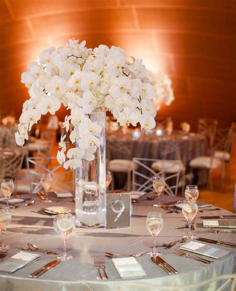 Ideas Advice Beautiful Flower And Centerpieces White Orchid Centerpieces