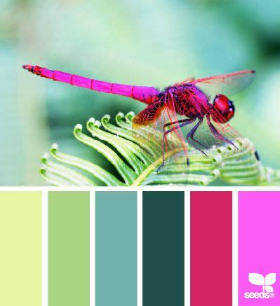 color inspiration 15 best images about summer hues on pinterest beach
