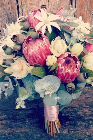Wedding Bouquet Adelaide by Wedding Bridal Bouquets And Flowers Adelaide