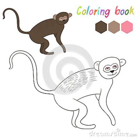 vervet monkey coloring page coloring book vervet kids layout for game stock vector