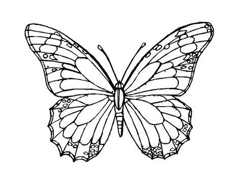 imagenes de mariposas para colorear grandes mariposas grandes para colorear e imprimir mariposas