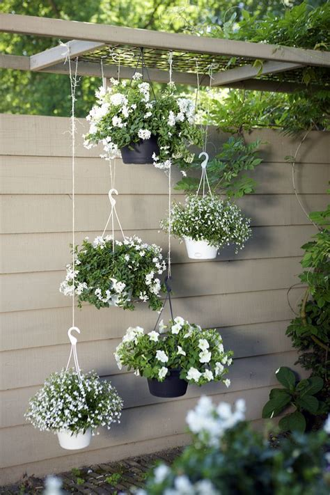 Hanging Plants For Patio by Ideas For The Garden Garden Gardens Modern And Flower