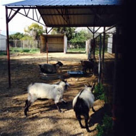 bracken bird farm pet stores redlands ca united