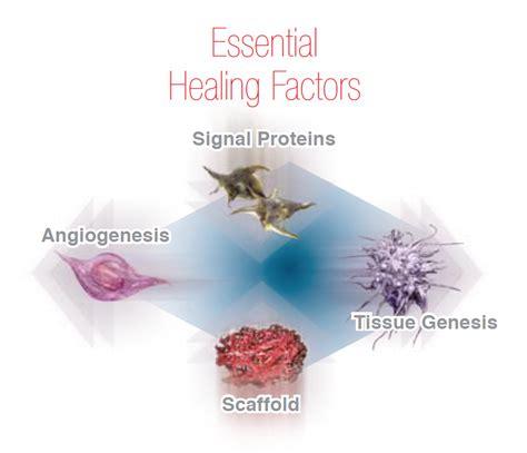 protein rich plasma high tech biotherapies prp platelet rich plasma