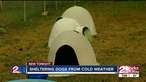 dog house tulsa tulsa spca collecting dog houses for wintertime kjrh com