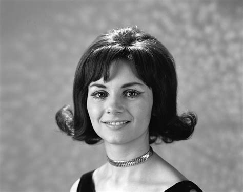 woman in mid sixties and hair growth 1960s 1970s portrait smiling brunette woman flip hair