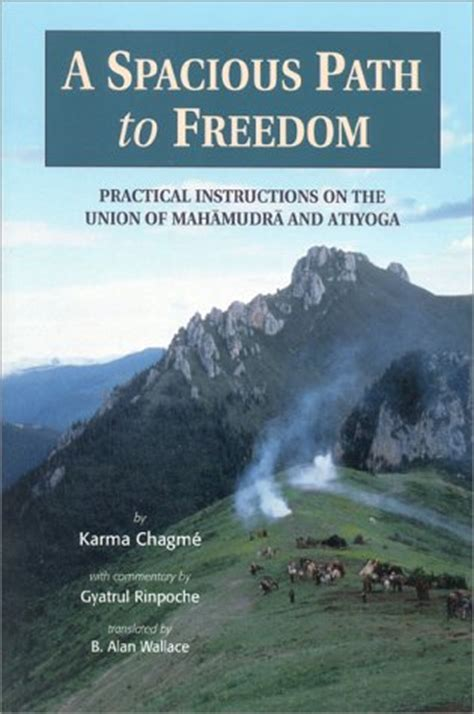 a spacious path to freedom practical on the