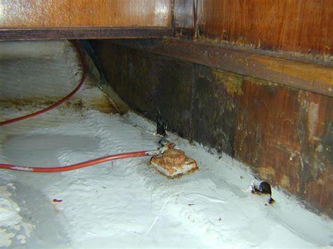 condens polyester boot blonkjachtexpertise meer informatie over het keuren van
