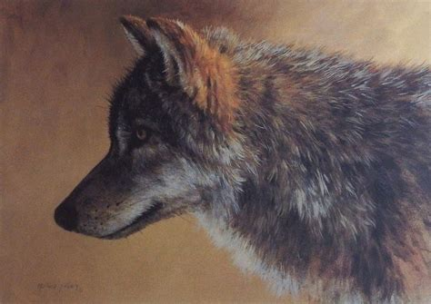 echo tattoo edmonton wolves timber wolf and products on pinterest