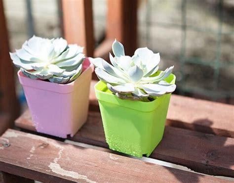 Vas Bunga Mini Melamin 6 5cm jual vas bunga plastik mini warna cantik colorful