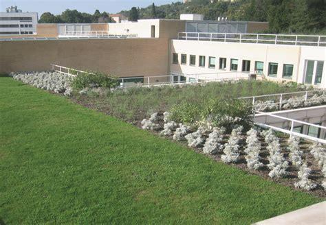 giardino pensile costo tetto termico optima giardini pensili