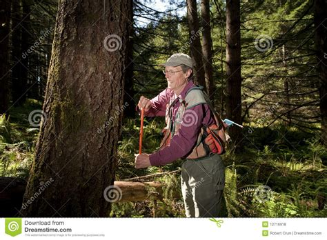 pacific northwest design royalty free stock photos image forester in a pacific northwest royalty free stock photos