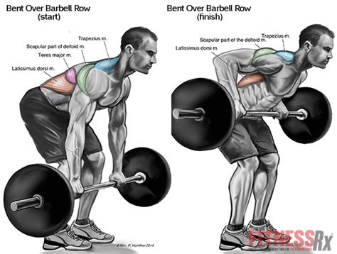 best lat exercises best bodybuilding back workout for lat width all