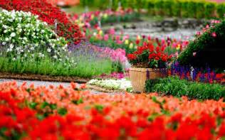 Flower Garden Images Free Flower Garden Backgrounds Wallpaper Cave