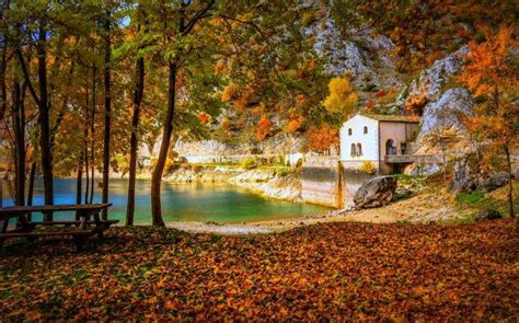 cottage italy cottage lake fall cing italy trees hill yellow