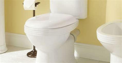 bidet outlet ebler european rear outlet two elongated toilet