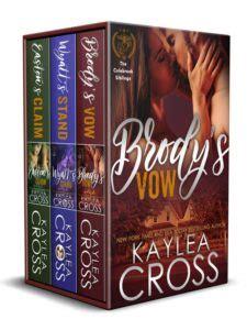 fast fury dea fast series volume 5 books books