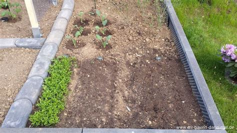kleiner nutzgarten gem 252 se im garten angepflanzt unser kleiner nutzgarten