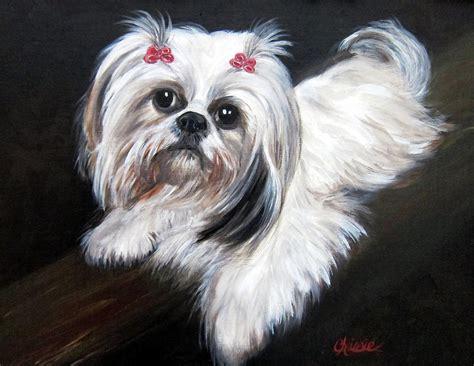 shih tzu paintings shih tzu painting by chrissie leander