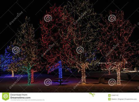 Chatfield Botanic Gardens Lights Lights Stock Photo Image 31697110