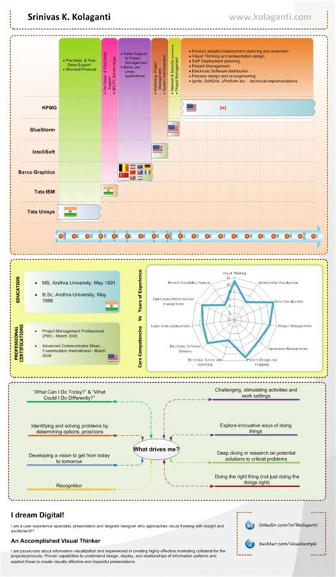 information about vizualresume visual infographic resume exles vizualresume