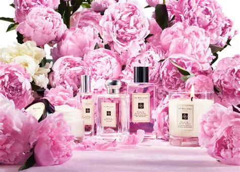 Parfum Jo Malone Peony Blush Edc 100ml want it jo malone peony and blush suede cologne for fall