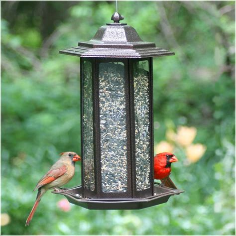 opus decorative lantern wild bird feeder tall amazon co