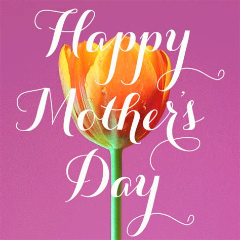 S Day Animation Mothers Day Images Hd Wallpaper Pics Photos Gif For