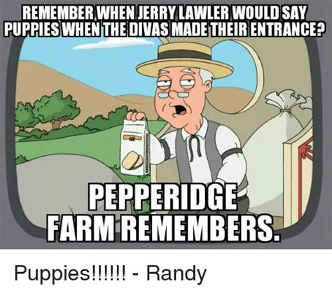 jerry lawler puppies 25 best memes about jerry lawler jerry lawler memes