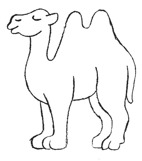 printable picture of a camel camel coloring pages